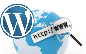 wordpress-seo-top